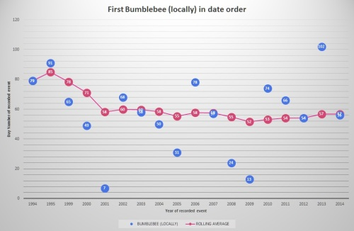 Bumblebee (locally) as of 2014